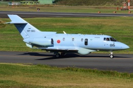 航空フォト:02-3015 航空自衛隊 U-125A