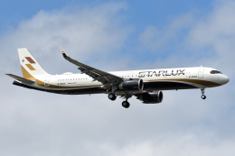 タヌキさんが、台湾桃園国際空港で撮影したスターラックス・エアラインズ A321-251NXの航空フォト(飛行機 写真・画像)