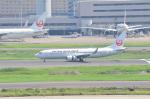 hareotokoさんが、羽田空港で撮影した日本航空 737-846の航空フォト(写真)