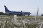 Mitsuki1211さんが、能登空港で撮影した全日空 737-881の航空フォト(写真)