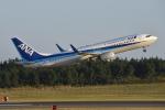 turenoアカクロさんが、鳥取空港で撮影した全日空 737-881の航空フォト(写真)