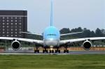 キットカットさんが、成田国際空港で撮影した大韓航空 A380-861の航空フォト(写真)