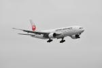 beimax55さんが、羽田空港で撮影した日本航空 777-246の航空フォト(写真)
