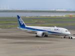 バンチャンさんが、羽田空港で撮影した全日空 787-8 Dreamlinerの航空フォト(写真)