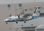 ひらひささんが、伊丹空港で撮影した天草エアライン DHC-8-103Q Dash 8の航空フォト(写真)