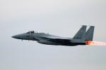 szkkjさんが、入間飛行場で撮影した航空自衛隊 F-15J Eagleの航空フォト(写真)
