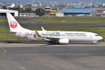 MOR1(新アカウント)さんが、宮崎空港で撮影した日本航空 737-846の航空フォト(飛行機 写真・画像)