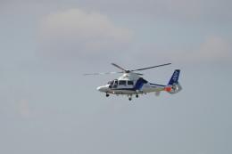 pringlesさんが、福岡空港で撮影したオールニッポンヘリコプター AS365N3 Dauphin 2の航空フォト(飛行機 写真・画像)