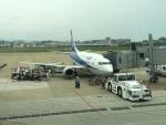 737dolphinさんが、福岡空港で撮影した全日空 737-500の航空フォト(写真)