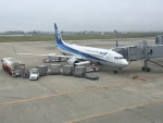 737dolphinさんが、仙台空港で撮影した全日空 737-800の航空フォト(写真)