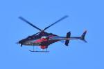 md11jbirdさんが、伊丹空港で撮影した朝日航洋 430の航空フォト(写真)