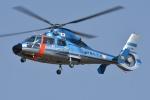 ブルーさんさんが、朝日航洋川越メンテナンスセンターで撮影した沖縄県警察 AS365N3 Dauphin 2の航空フォト(飛行機 写真・画像)