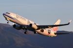 meskinさんが、山形空港で撮影したチャイナエアライン 737-8FHの航空フォト(写真)