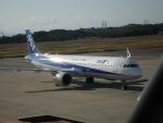 ヒコーキグモさんが、岡山空港で撮影した全日空 A321-272Nの航空フォト(写真)
