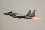 kuraykiさんが、入間飛行場で撮影した航空自衛隊 F-15J Eagleの航空フォト(写真)