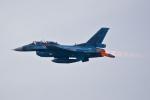 maverickさんが、入間飛行場で撮影した航空自衛隊 F-2Bの航空フォト(写真)