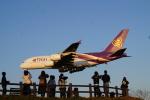 cocoa11さんが、成田国際空港で撮影したタイ国際航空 A380-841の航空フォト(写真)