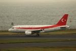 wingace752さんが、羽田空港で撮影したトルコ政府 A319-115CJの航空フォト(写真)