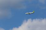 ひめままさんが、宮崎空港で撮影したソラシド エア 737-81Dの航空フォト(写真)