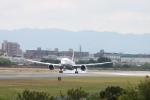 ひらひささんが、伊丹空港で撮影した全日空 787-8 Dreamlinerの航空フォト(写真)
