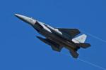 スカルショットさんが、岐阜基地で撮影した航空自衛隊 F-15J Eagleの航空フォト(写真)