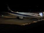 ヒコーキグモさんが、岡山空港で撮影した全日空 737-881の航空フォト(写真)