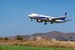 Ariesさんが、函館空港で撮影した全日空 767-381の航空フォト(写真)