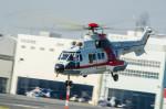 NCT310さんが、東京ヘリポートで撮影した朝日航洋 AS332L Super Pumaの航空フォト(写真)