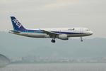 きんめいさんが、関西国際空港で撮影した全日空 A320-214の航空フォト(写真)