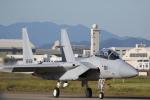 ロボキさんが、名古屋飛行場で撮影した航空自衛隊 F-15DJ Eagleの航空フォト(飛行機 写真・画像)