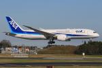 みるぽんたさんが、成田国際空港で撮影した全日空 787-8 Dreamlinerの航空フォト(写真)