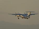 いぶちゃんさんが、新潟空港で撮影した海上保安庁 DHC-8-315 Dash 8の航空フォト(写真)