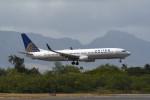 kuro2059さんが、ダニエル・K・イノウエ国際空港で撮影したユナイテッド航空 737-924/ERの航空フォト(写真)