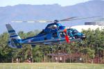 yabyanさんが、松本空港で撮影した長野県警察 AS365N3 Dauphin 2の航空フォト(飛行機 写真・画像)