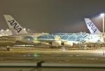 あしゅーさんが、成田国際空港で撮影した全日空 A380-841の航空フォト(写真)