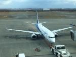737dolphinさんが、新千歳空港で撮影した全日空 737-881の航空フォト(写真)
