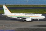 Chofu Spotter Ariaさんが、羽田空港で撮影したコートジボワール政府 A319-133X CJの航空フォト(飛行機 写真・画像)