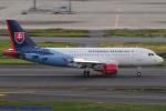 Chofu Spotter Ariaさんが、羽田空港で撮影したスロバキア政府 A319-115CJの航空フォト(飛行機 写真・画像)