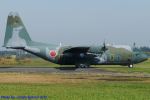 Chofu Spotter Ariaさんが、入間飛行場で撮影した航空自衛隊 C-130H Herculesの航空フォト(飛行機 写真・画像)