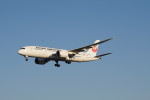 senbaさんが、成田国際空港で撮影した日本航空 787-8 Dreamlinerの航空フォト(写真)