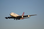 senbaさんが、成田国際空港で撮影したタイ国際航空 A380-841の航空フォト(写真)