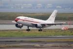 Hiro-hiroさんが、羽田空港で撮影したスペイン空軍 A310-304の航空フォト(写真)