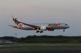 成田国際空港 - Narita International Airport [NRT/RJAA]で撮影されたジェットスター - Jetstar Airways [JQ/JST]の航空機写真