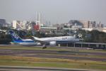 meijeanさんが、伊丹空港で撮影した全日空 787-8 Dreamlinerの航空フォト(写真)