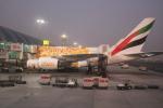 Noyu30さんが、ドバイ国際空港で撮影したエミレーツ航空 A380-861の航空フォト(写真)