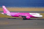 SFJ_capさんが、中部国際空港で撮影したピーチ A320-214の航空フォト(写真)