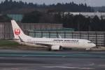 KAZFLYERさんが、成田国際空港で撮影した日本航空 737-846の航空フォト(写真)