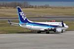 もぐ3さんが、新潟空港で撮影した全日空 737-781の航空フォト(写真)
