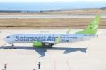 青春の1ページさんが、神戸空港で撮影したソラシド エア 737-81Dの航空フォト(写真)