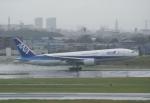あおいそらさんが、伊丹空港で撮影した全日空 777-281の航空フォト(飛行機 写真・画像)